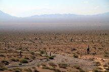 La région désertique de Salta