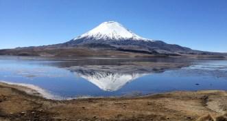 Lac Chungara (alt. 4500 m)