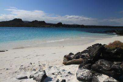 Une petite plage privée, ou presque