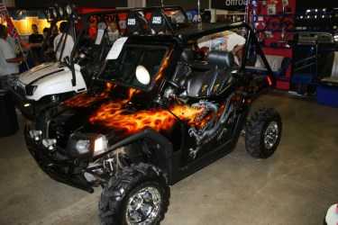 Polaris RZR with custom paint