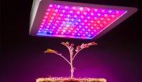 Best Full Spectrum LED Grow Lights for Plants in 2018 - UV ...