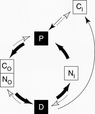 Ecosystem health depends on complex relationship between organisms