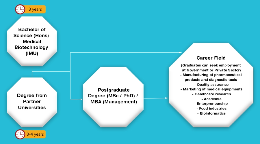 IMU Medical Biotechnology Programme