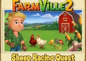 Sheep Racing Quest