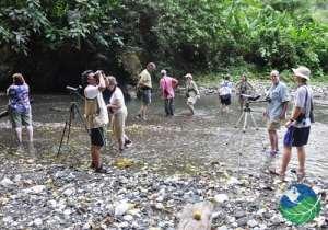 Bosque del Rio Tigre Lodge Birding