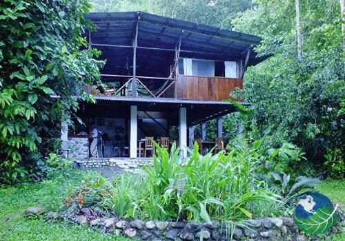 Bosque del Rio Tigre Lodge Nature View