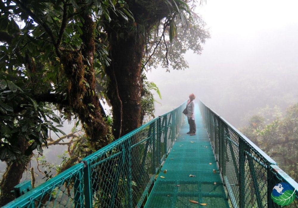 Monteverde-Bridge
