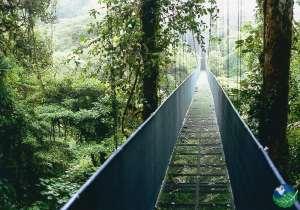 Monteverde Sky Walk Bridge