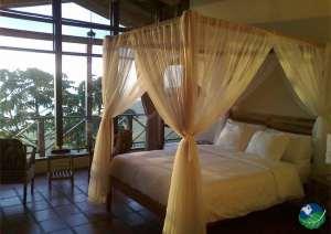 Rio Magnolia Hotel Rooms