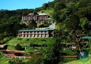 top 10 monteverde tours costa rica a rainforest experience establo lodge