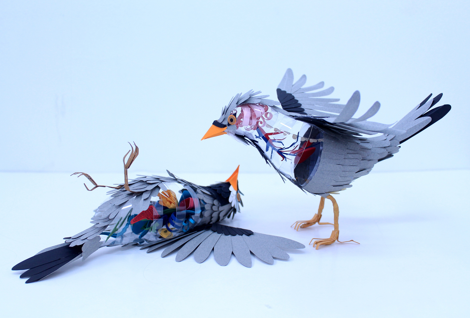 Paper Bird Sculpture Diana Beltran Herrera Paper Bird Internal Anatomy