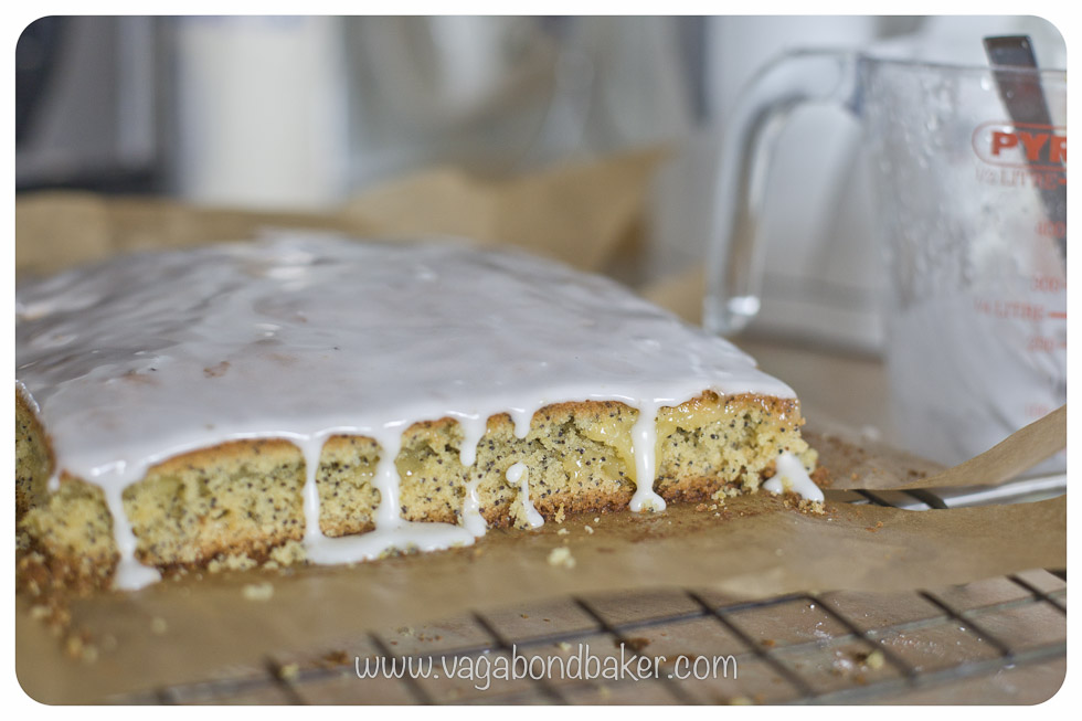 cover the sponge with the lemon icing
