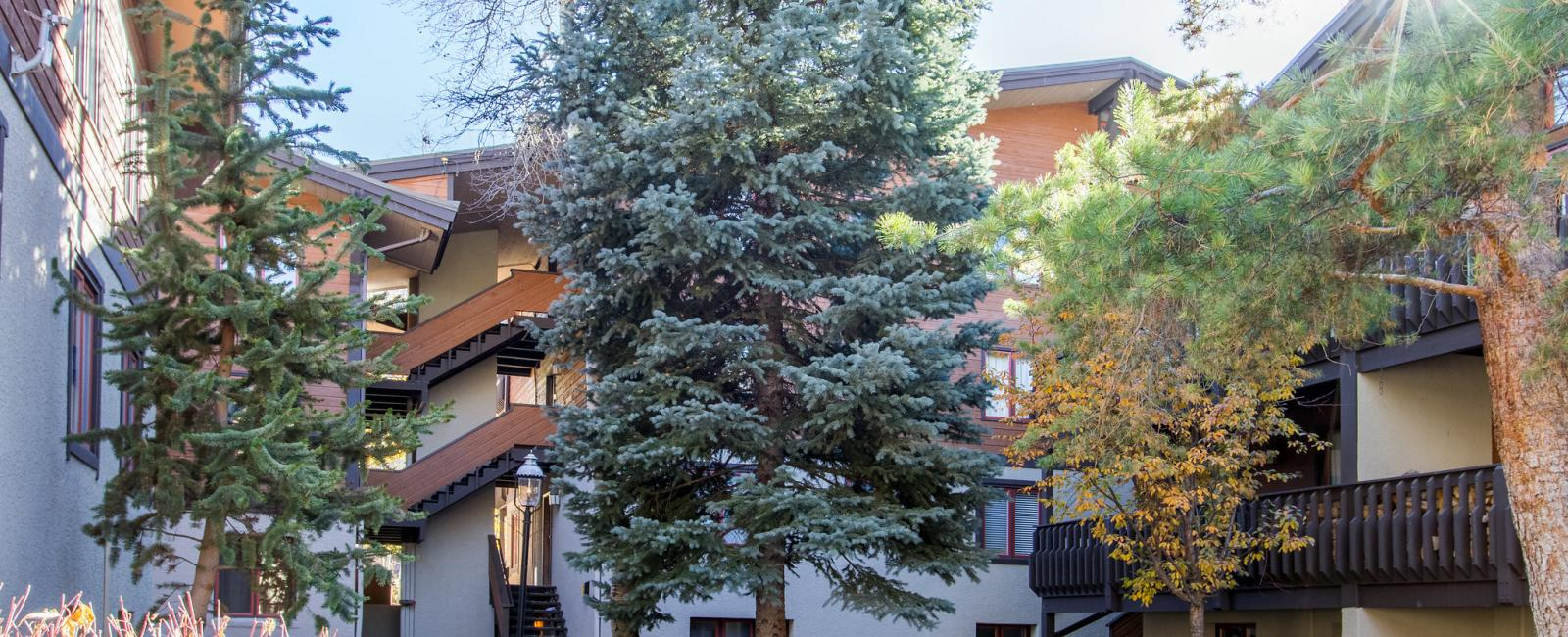 Tivoli Lodge Vail Vail Realty All Seasons All Seasons Vail Close To Children S Ski