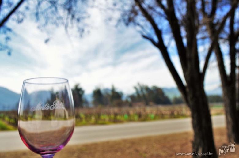 tour pela vinícola Santa Rita