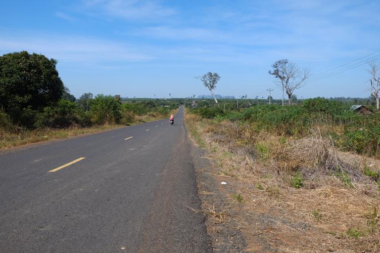 We fietsen veel langs plekken waar het regenwoud is gekapt