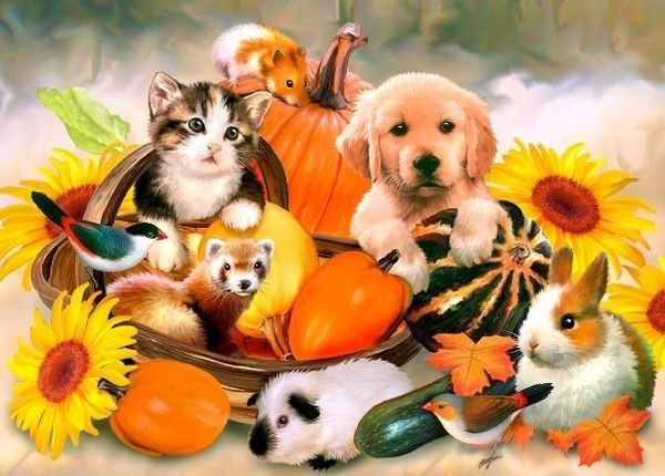 Free Fall Puppy Wallpaper Art Howard Robinson Page 4