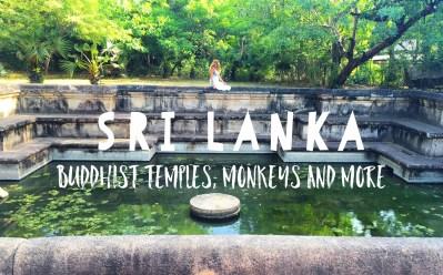 Sri Lanka, Polonarauwa: Buddhist Temples, Monkeys and Lunch At Local Village