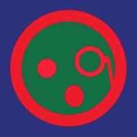Soarindragon
