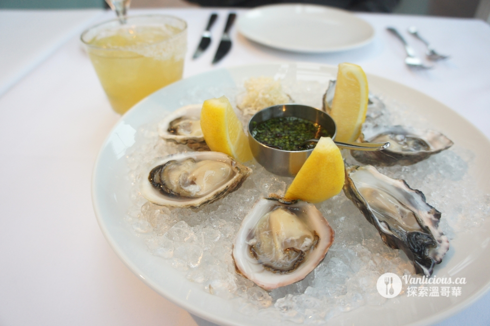Ancora oyster