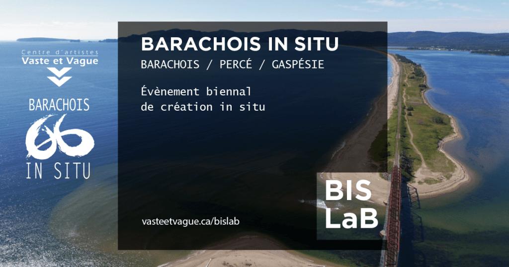 BARACHOIS IN SITU - LA BIENNALE | BIS LaB | PERCÉ / Gaspésie | Centre d'artistes Vaste et Vague