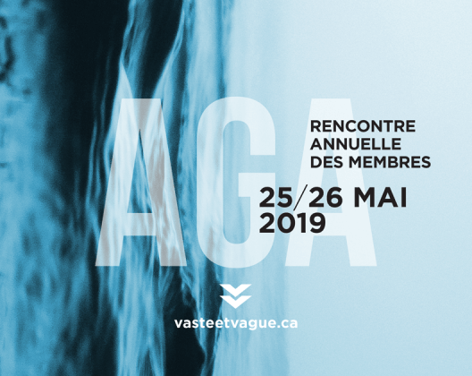 RENCONRTE ANNUELLE DES MEMBRES et AGA 2019 | Centre d'artistes Vaste et Vague