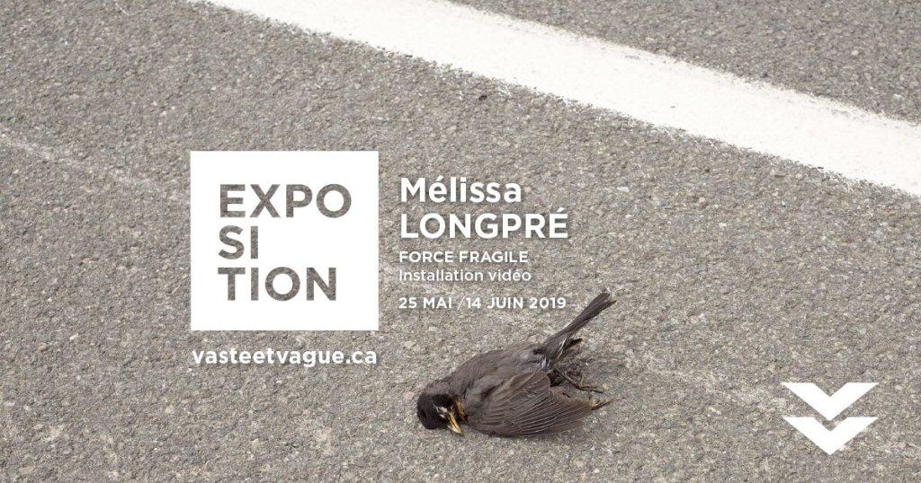 Mélissa LONGPRÉ : FORCE FRAGILE   Installation vidéo   Centre d'artistes Vaste et Vague   Programmation 2019
