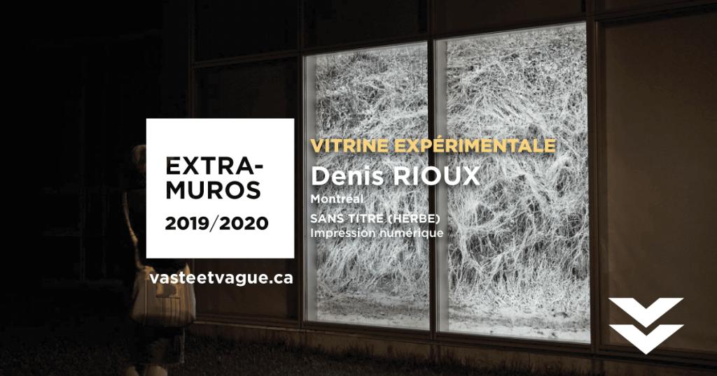 Denis RIOUX | SANS-TITRE (HERBE) | Vitrine expérimentale 2019-2020 | Crédit photo Denis RIOUX