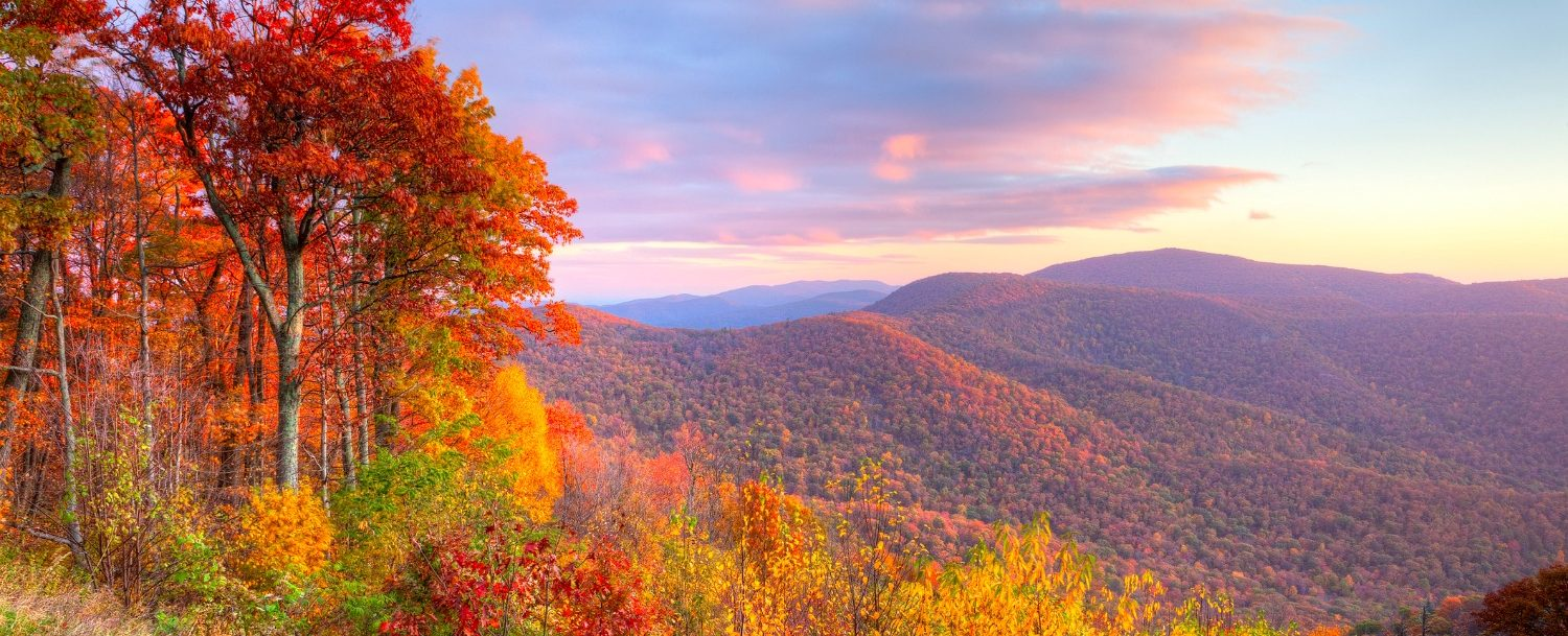 New England Fall Wallpaper 5 Of The Best Shenandoah Hiking Trails To Explore This