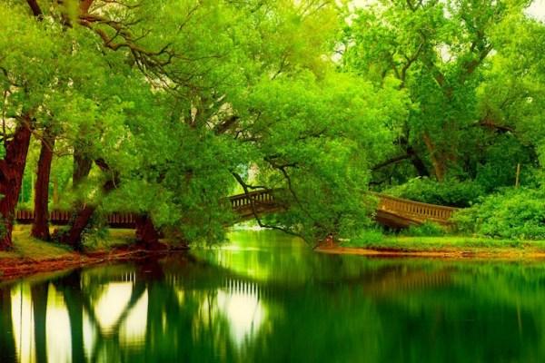 lakes-bridge-green