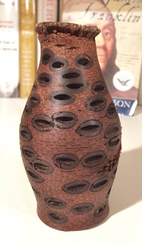 2x7 Banksia Vase. Banksia pods come from the tree of the same name found in western Australia