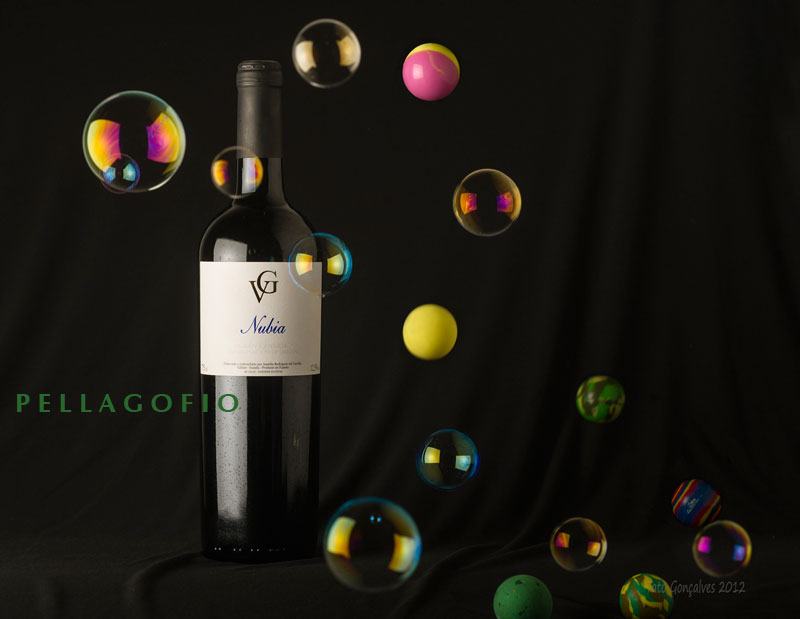 vinos-norte-gran-canaria-0713-0