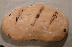 Olivenbrot nach dem Backen