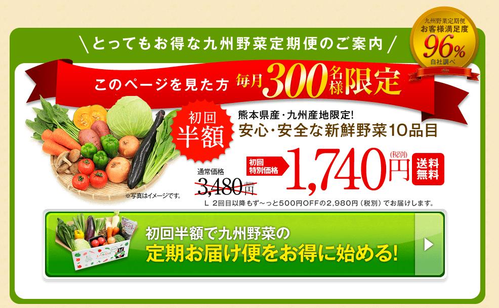 安心・安全の九州野菜の宅配・通販【九州野菜王国】