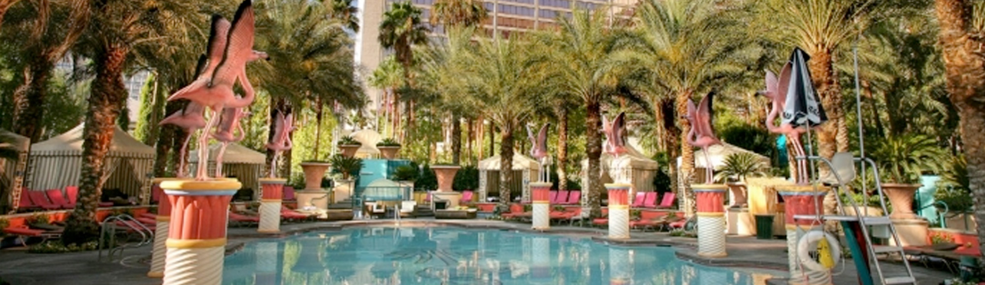 Flamingo Pool Vegas Rules Las Vegas Hotels Shows Tours Clubs More