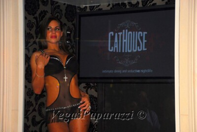 dsc 6937 CatHouse Grand Opening