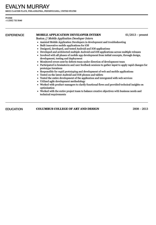resume web developer sample intern