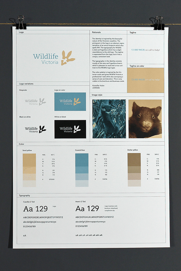 65+ Brand Guidelines Templates, Examples  Tips For Consistent
