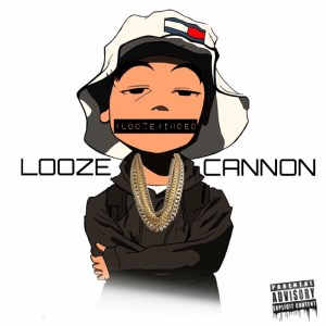 loozecover