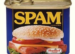 Image (1) spam.jpg for post 116616