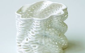 Image (1) Ceramics-by-Nervous-System_small.jpg for post 259336