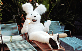 Wayfair bunny on furniture