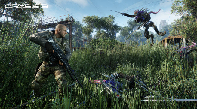 crysis grass big