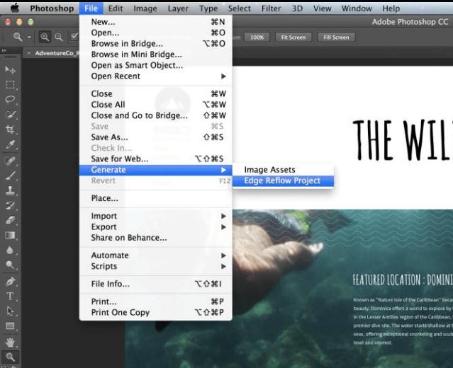 Adobe Photoshop Generator
