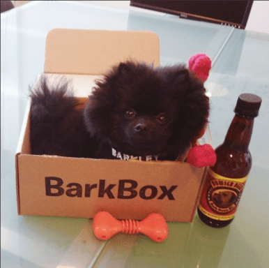 barkbox 3