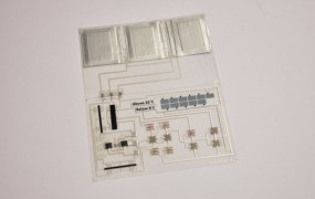 Thin Film Electronics embeds electronics in plastic.
