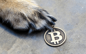 Thirty-five percent of those polled said they expect Bitcoin's popularity to nosedive.