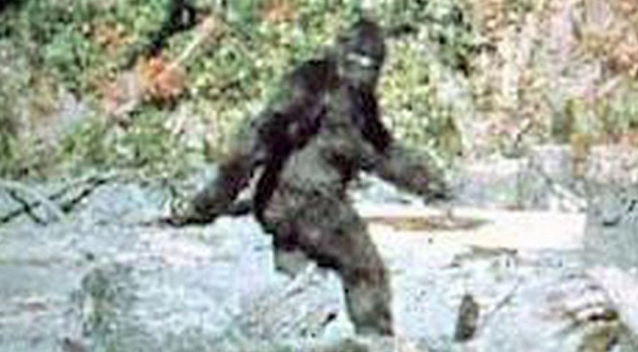 Engineering managers -- as elusive as Bigfoot