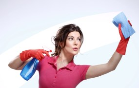 housewife cleaning ipag shutterstock