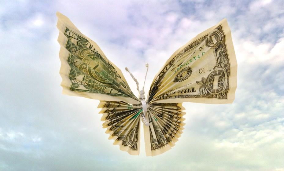 Money butterfly
