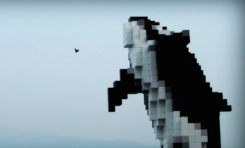 digital orca